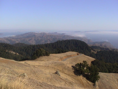 View from Pop O'Rourke's bench on Mt Tam