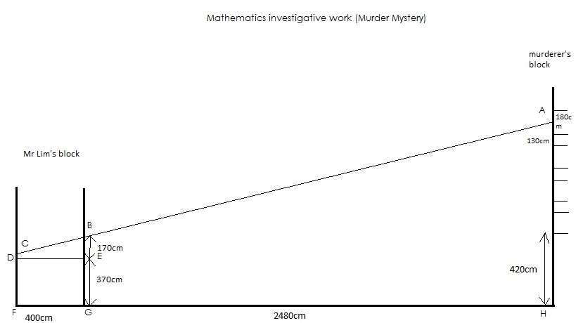 Mathematics Investigative Work