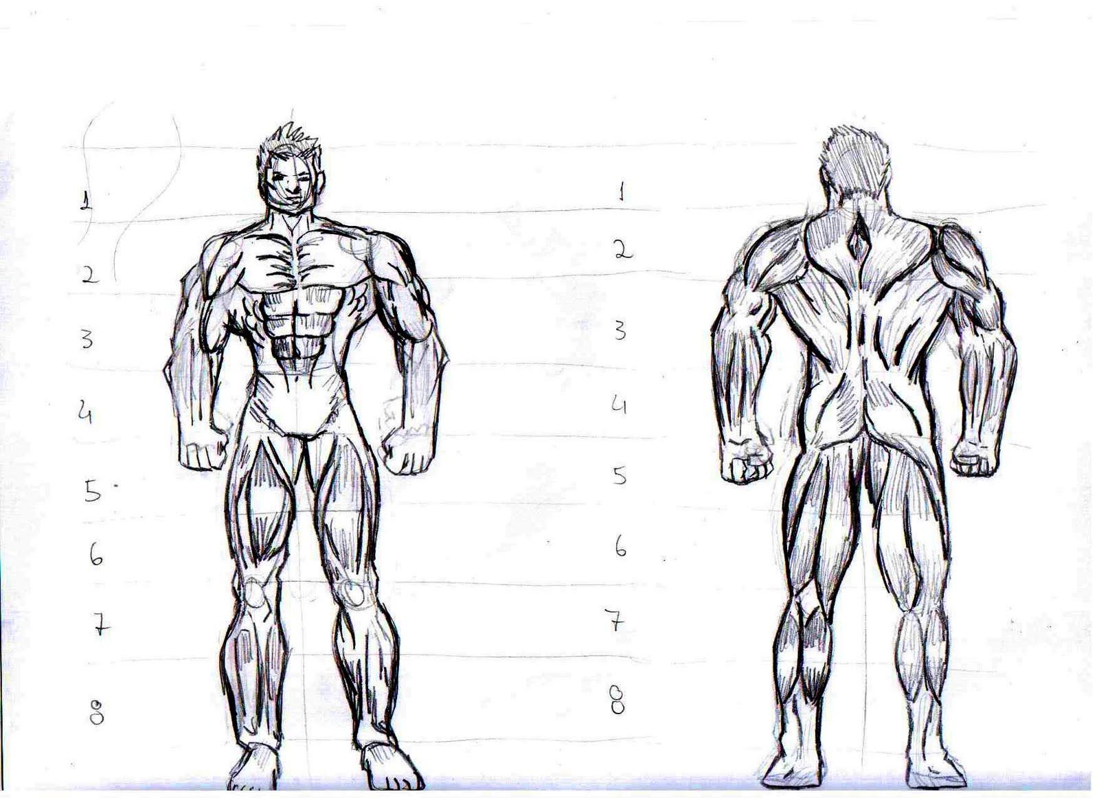 Desenhando Como Desenhar Um Corpo