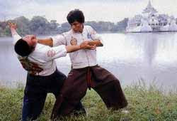martial arts training other martial arts