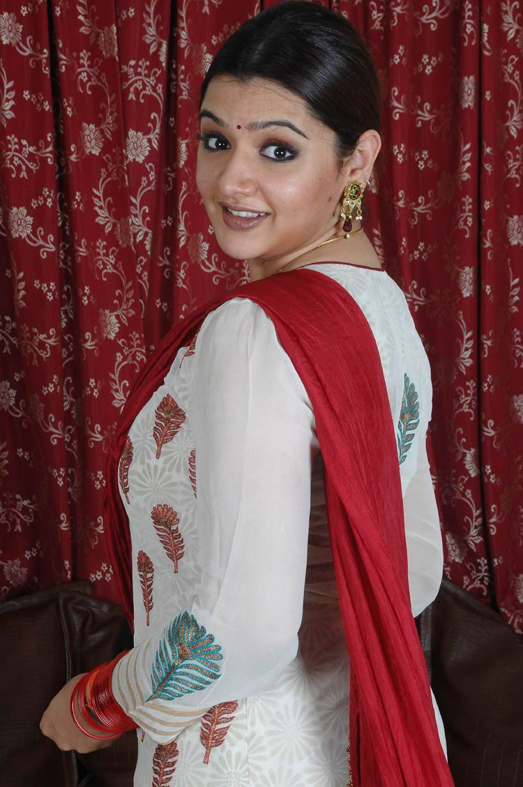 South indian actress aarthi agarwal marriage