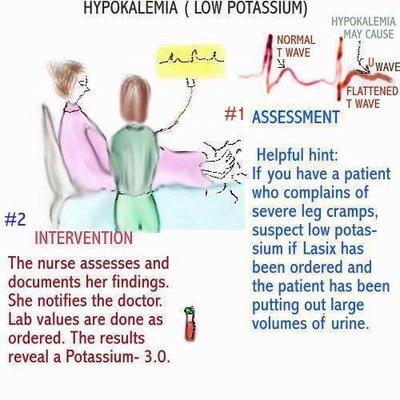 Radioactive Puppy: Hypokalemia