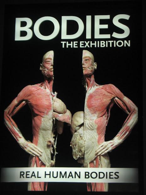 Madsen' Bodies Exhibition
