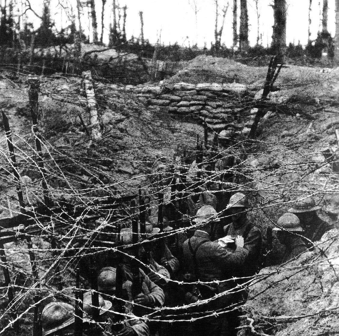 warfare essay trench warfare essay