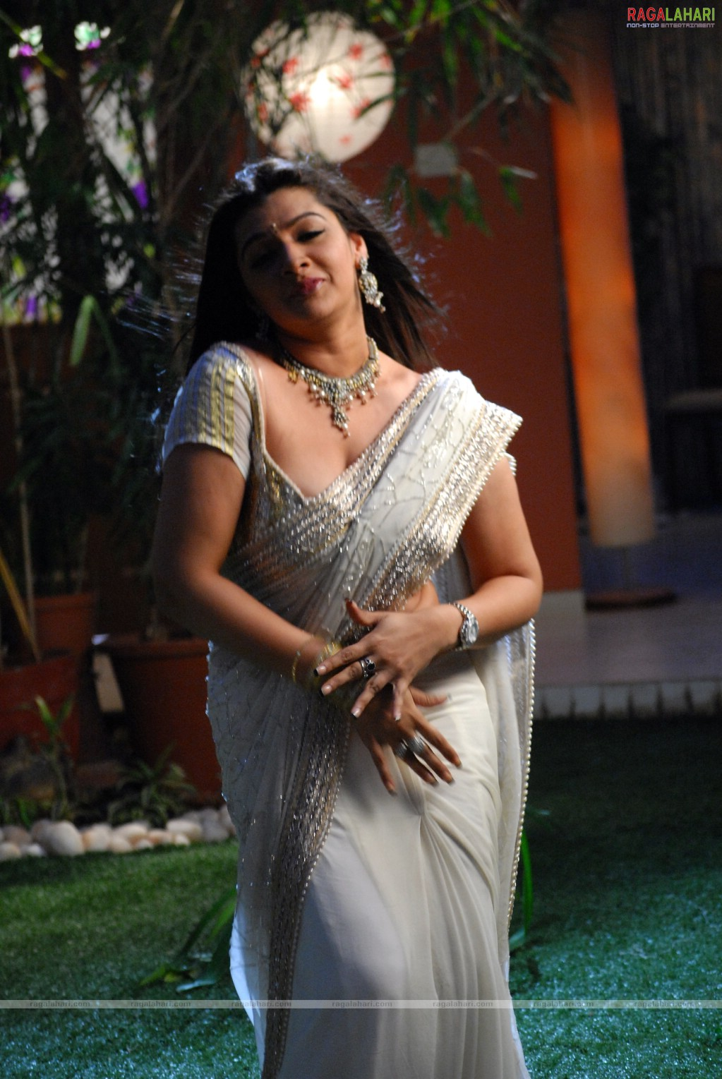 Aarti Agarwal Sexy Clevage Show In Saree Bra Visible