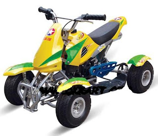 MINI BIKE / DIRT BIKE / BEACH MOTOR