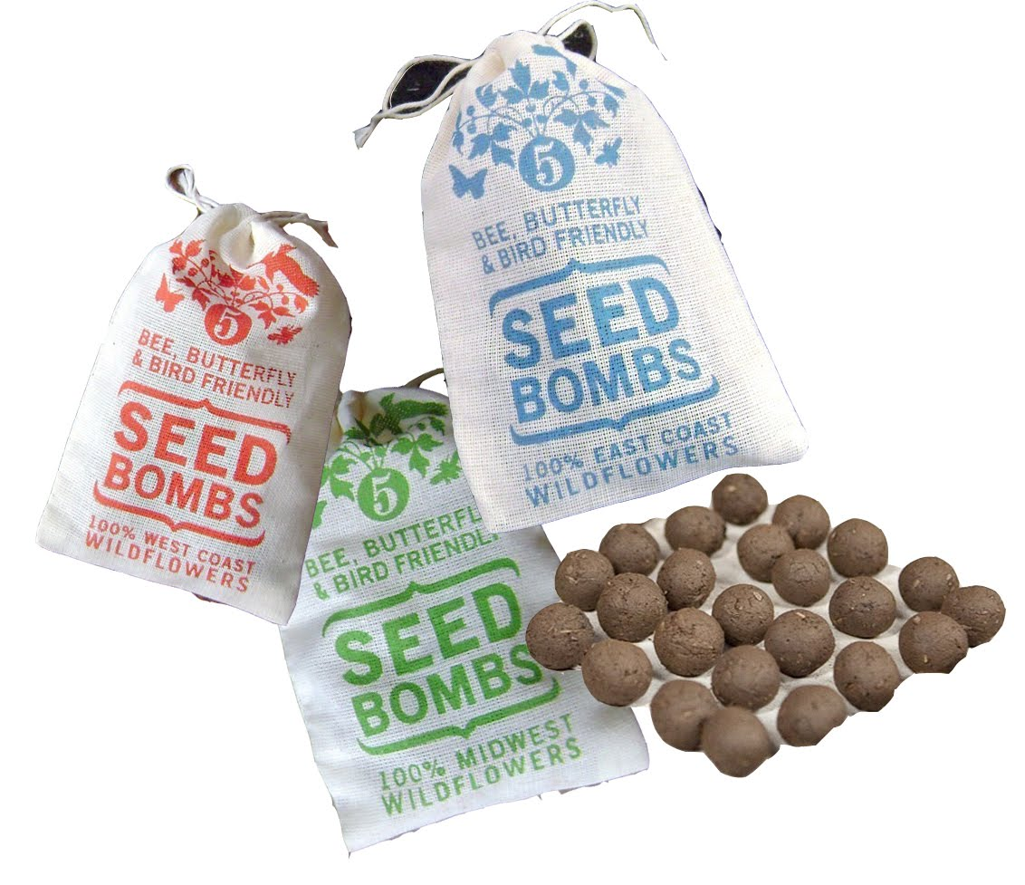 flores del sol: seed bombing