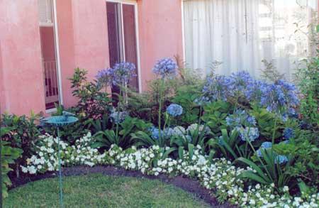 Jardiner a paisajismo ideas y consejos para un jardin peque o for Jardines pequenos con plantas de sombra