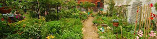 The Garden Plot: GreenThumb GrowTogether on March 20th in NYC!