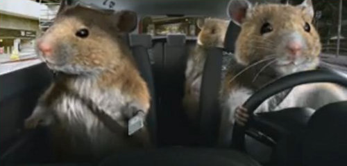 Kia Soul Hamster Commercial Named Automotive Tv Ad Of The Year