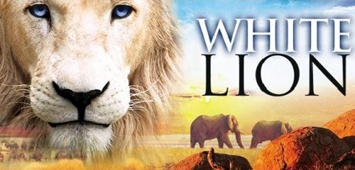 White Lion' film highlights canned trophy hunting in South Africa