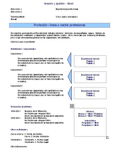 Plantillas curriculums vitae funcionales CURRICULUMS VITAE