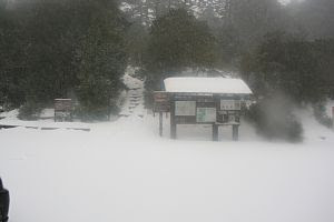 Snow at Yodogawa trail entrance