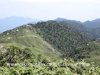 Okabu trail, Yakushima