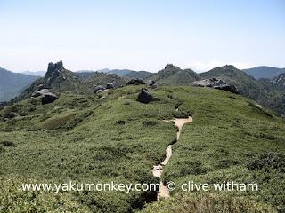 Trail to Miyanoura dake, Yakushima