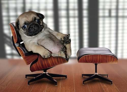 Contextual Studies Chairs