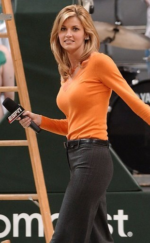 erin andrews tits