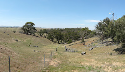 """The """"track"""" to Ingliston Granites (just follow the fence) - Werribee Gorge State Park"""