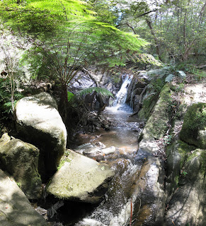 Olinda Falls - Dandenong Ranges National Park