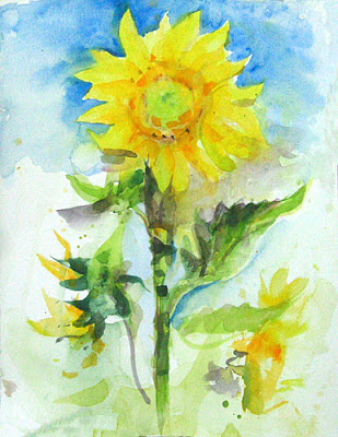 watercolour of a sunflower aspiring