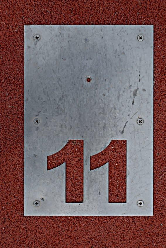 11 - photo #22