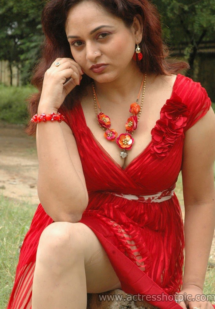 actress mix  hot south actress shailu spicy photos