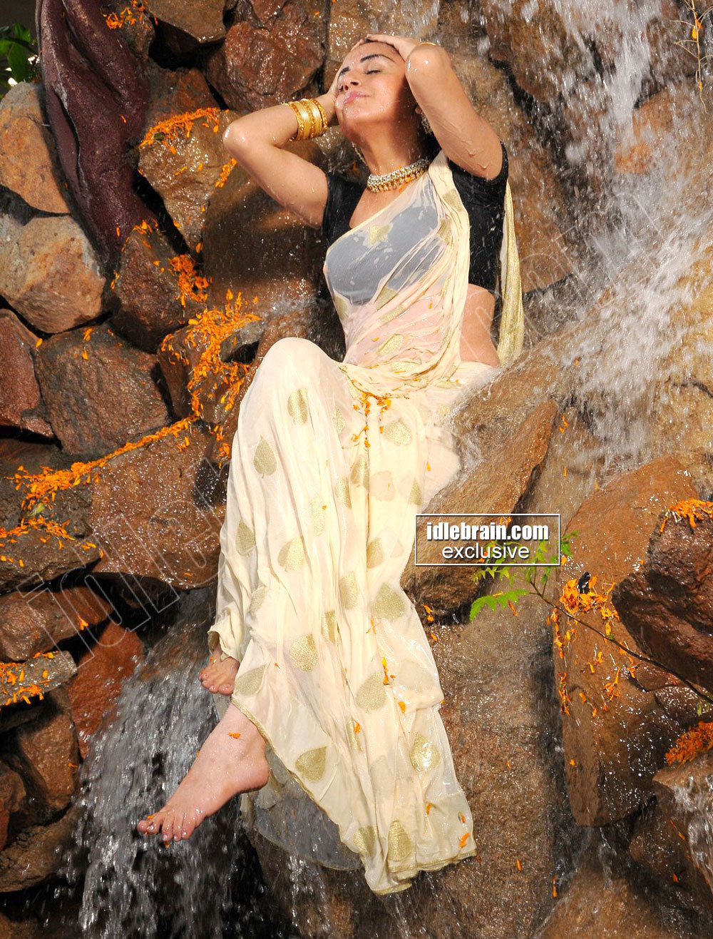 Pretty Sharrdha Arya wet exposing hot in transparent saree!!
