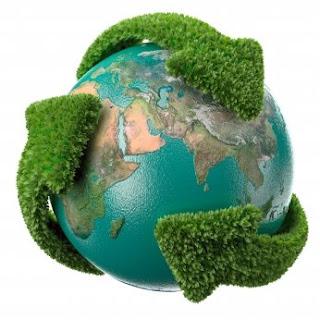 ecologia medio ambiente