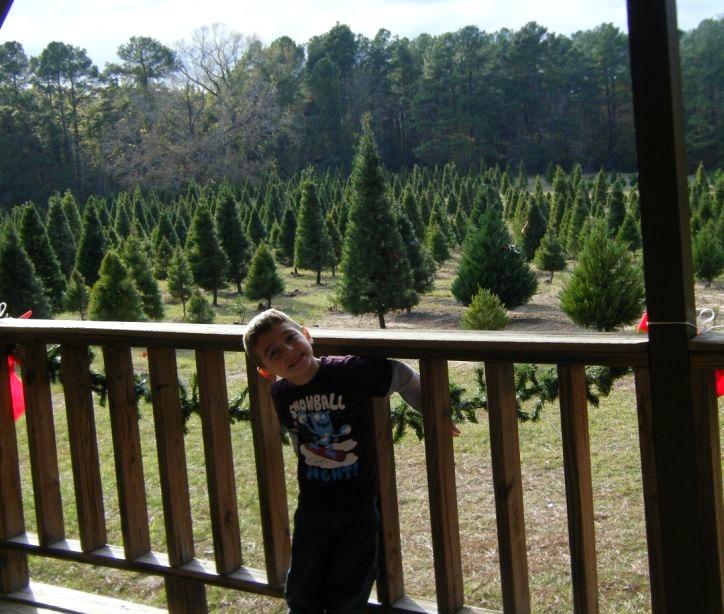Our Scott Spot: Christmas Tree Farm