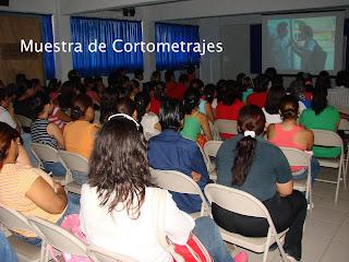 Cortos 8d864ebcde4e