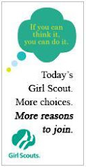 Girl Scouts Rocks!