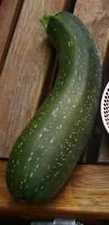 k rbis gurken und zucchini topfgartenwelt der. Black Bedroom Furniture Sets. Home Design Ideas