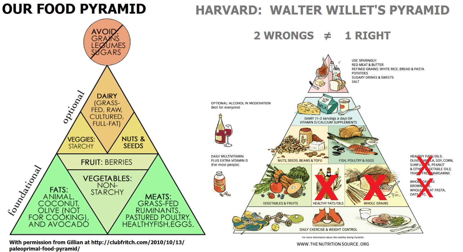 Harvard Food Plate Diagram S 2 Circle Venn Online Pyramid Foto Bugil Bokep 2017