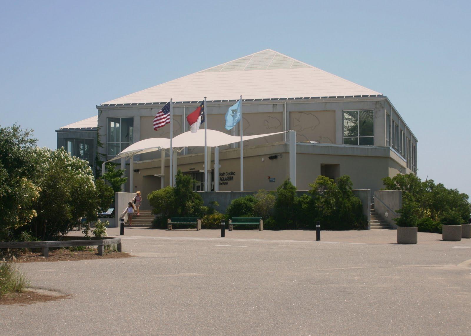 The Old Salt North Carolina Aquarium At Fort Fisher