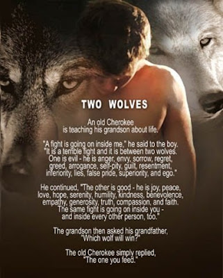 Image result for poem of the two wolves