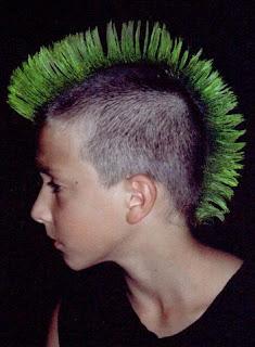 Mohawk Boys More Mohawk Hairstyles