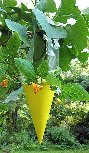 macetero o florero en forma de cono, jardín, decoración fiestas