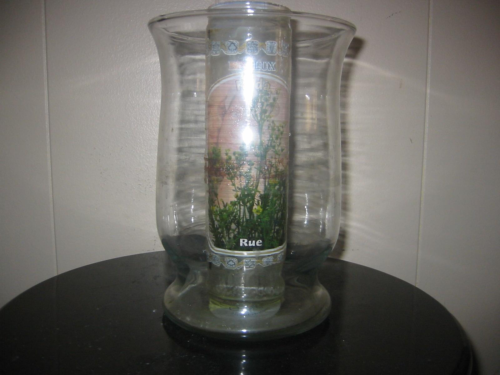 Herbs | Rue, Ruda