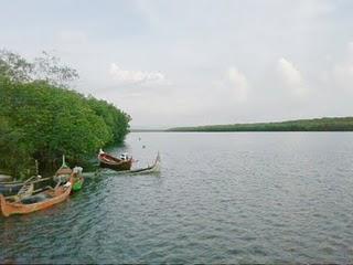 wisata air pesisir banyuwangi selatan