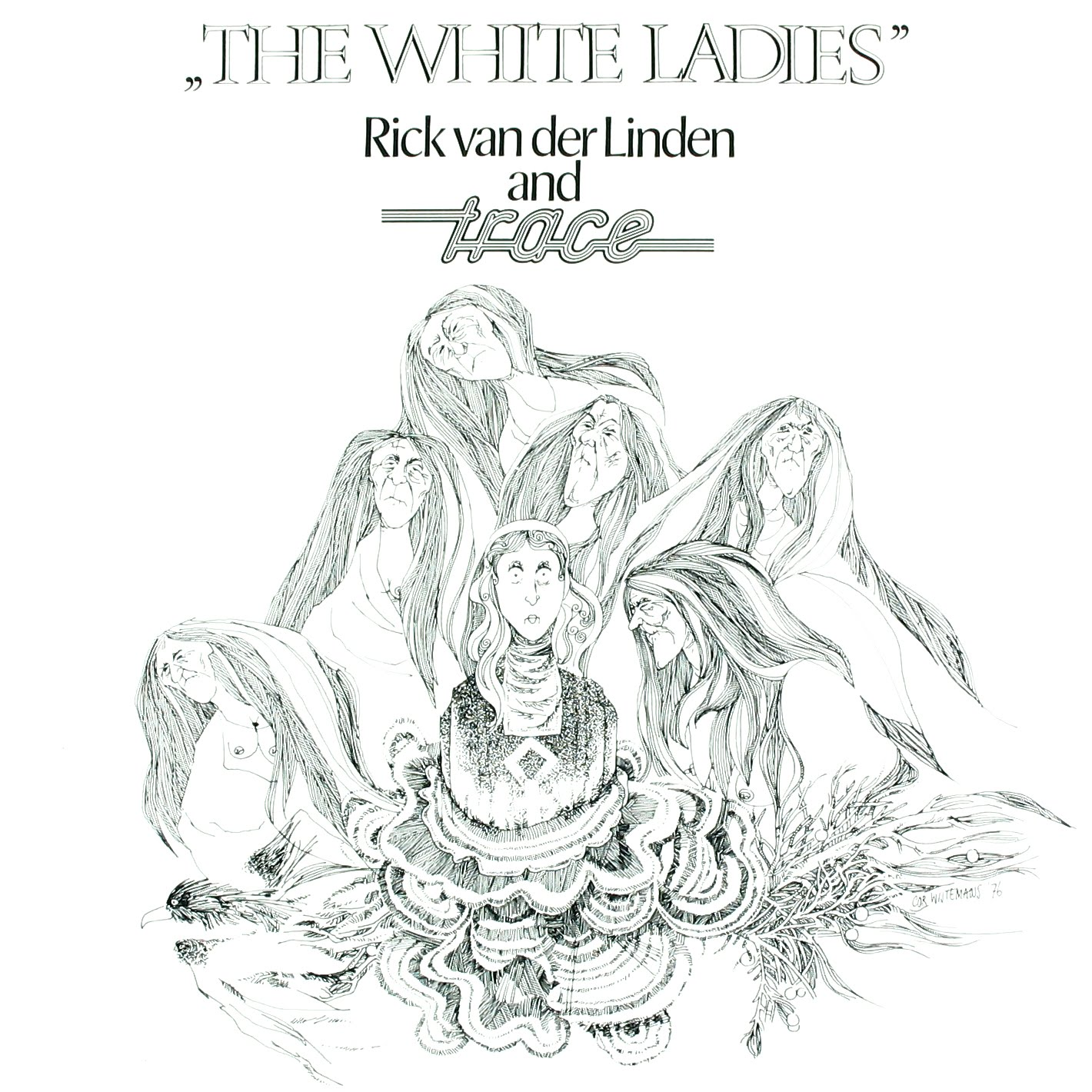 My Music Collection The White La S