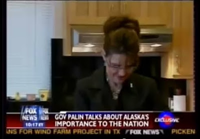 palingates: Sarah Palin can't see the truth from her ...