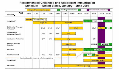 immunization schedule baby first year