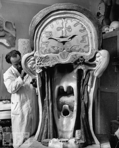 "Morbid Anatomy ""excellent Oldschool Science Models"