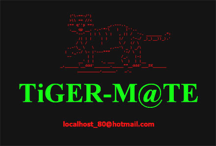 how to hacked Google.com.bd hacked by Bangladeshi Tiger