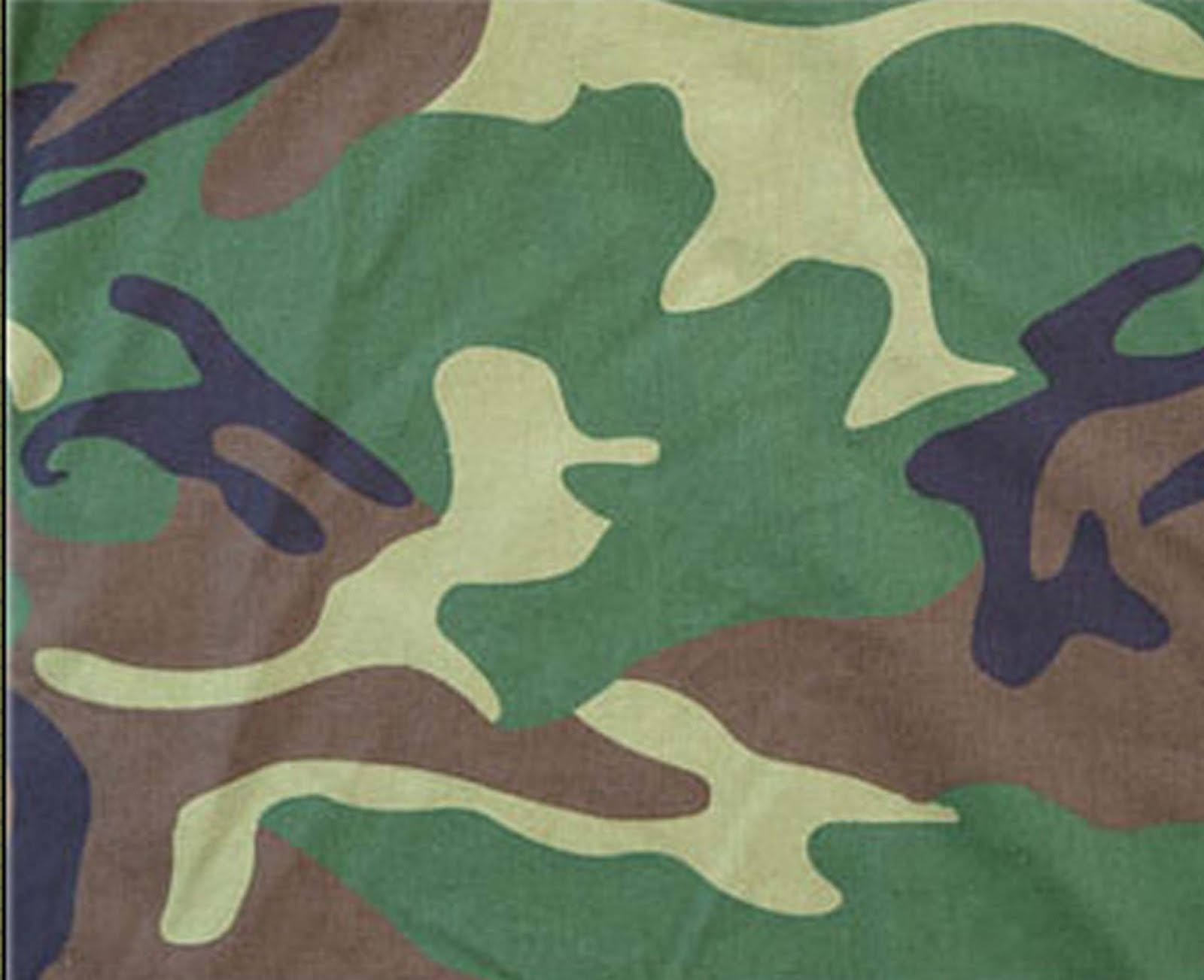 Diagram Of A Camouflage