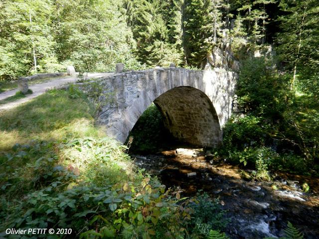 GERARDMER (88) - Le sentier écologique des Perles de la Vologne - Pont des Fées