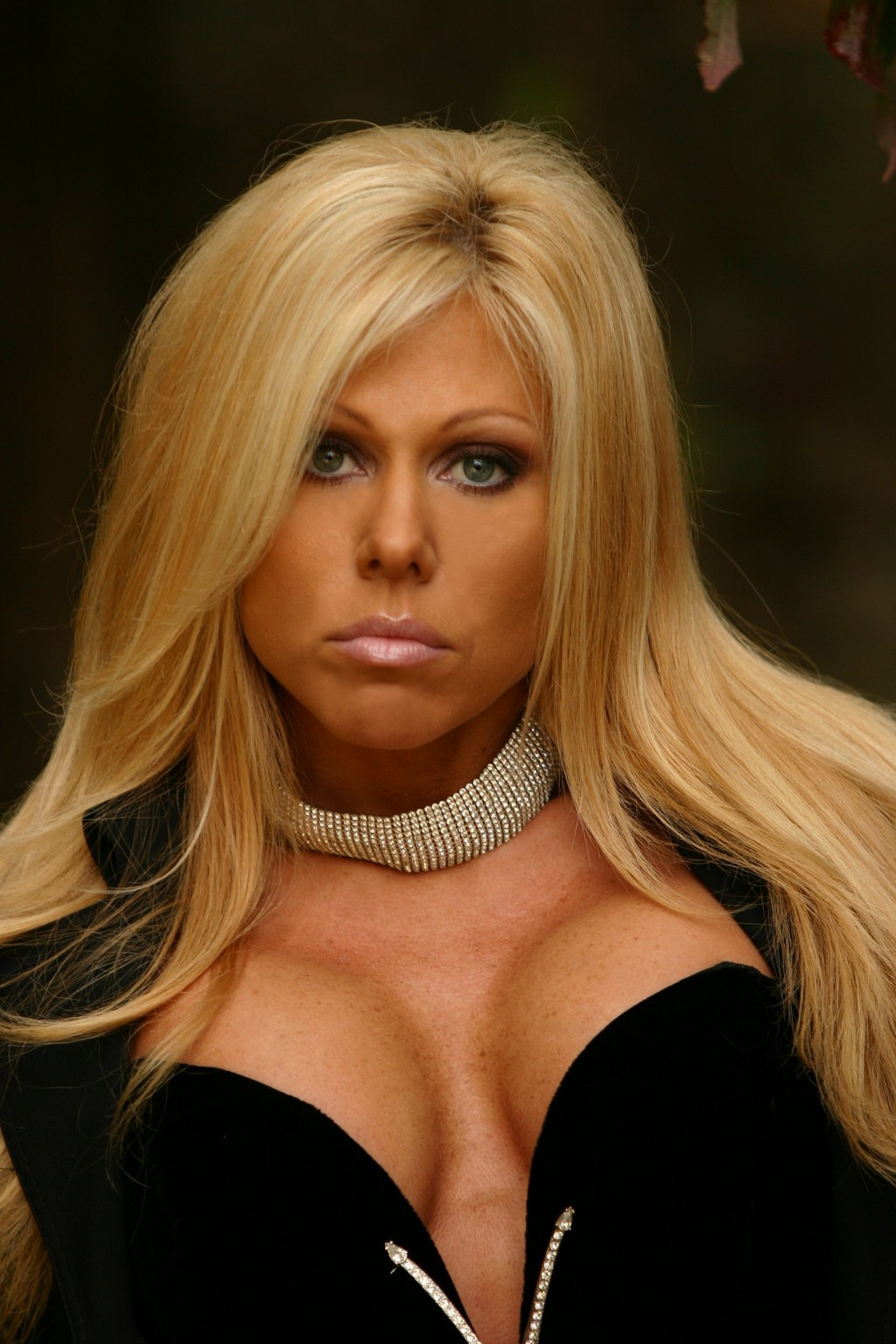 Women Of Wrestling Terri Runnels Pictures From -7599