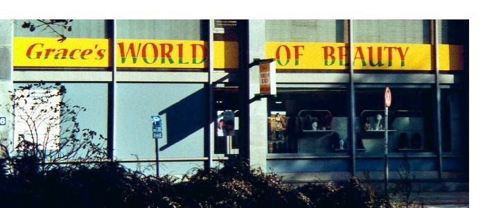 Altona Afro Shop