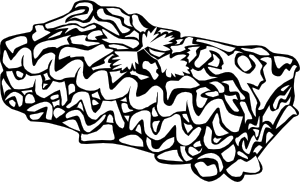 Colorable black and white lasagna pasta clipart