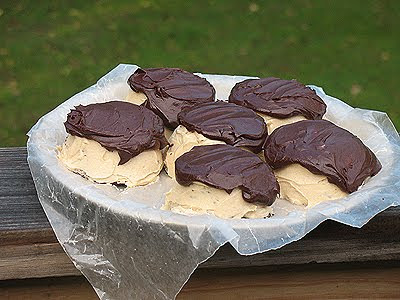 A photo of mini chocolate cakes with peanut butter frosting and chocolate peanut butter topping resting on a plate.